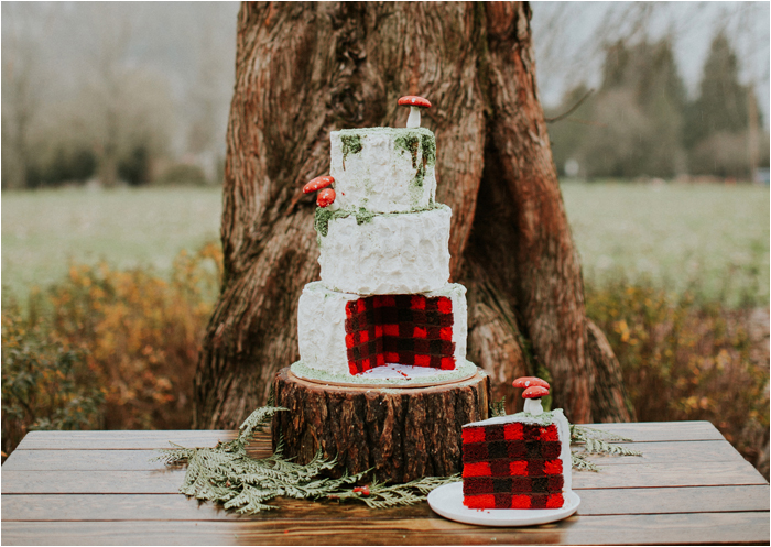 plaid-cake-wedding (3)
