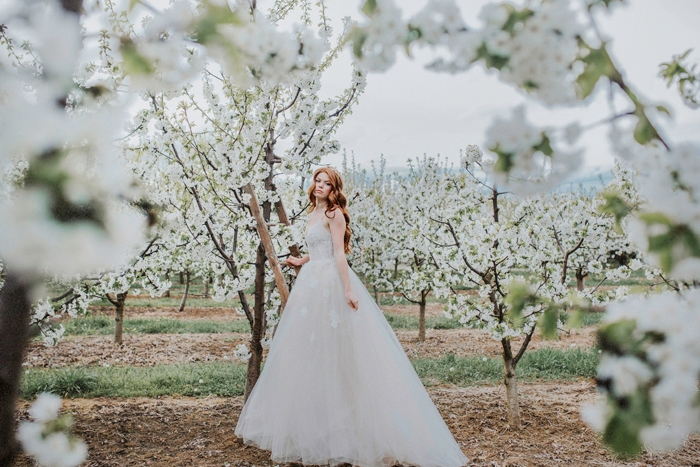 Orchard-Wedding56
